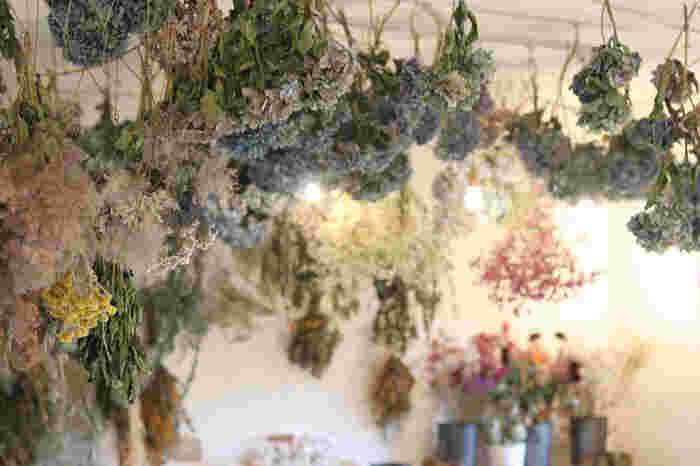 各種オーダー制作やワークショップを開催している「une graine」。自家製乾燥させた数十種類のドライフラワーから好きなものを10本選んで、スワッグを作っていきます。選ぶ花材によってスワッグの大きさや雰囲気も変わります。カフェのようなおしゃれな雰囲気の教室なので、気軽に参加できそうですね!