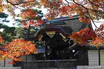 「建春門」は、皇后陛下や皇太子、外国の首相が京都御所を訪れる際に使われていた門です。  紅葉の赤が映えますね。
