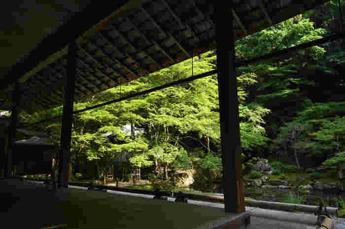 南禅院は、もともとは、13世紀末に亀山天皇が離宮を寄進して禅寺とした南禅寺発祥の地です。ここには鎌倉時代末の池泉回遊式庭園があります。