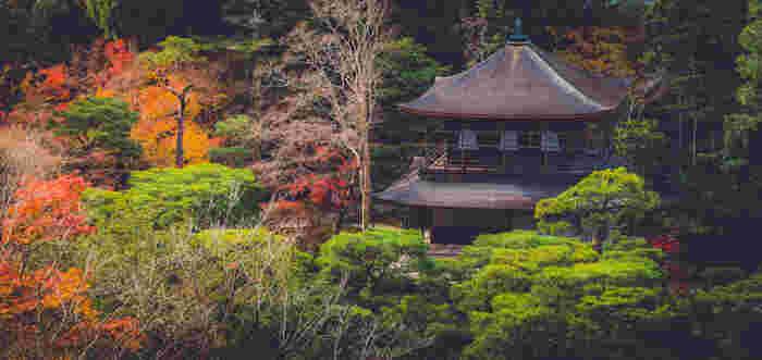 世界遺産「銀閣寺」は、正式名称を慈照寺(じしょうじ)といい、室町時代に足利義政によって造営されたお寺です。金閣、西本願寺境内にある飛雲閣とあわせて「京の三閣」と呼ばれています。