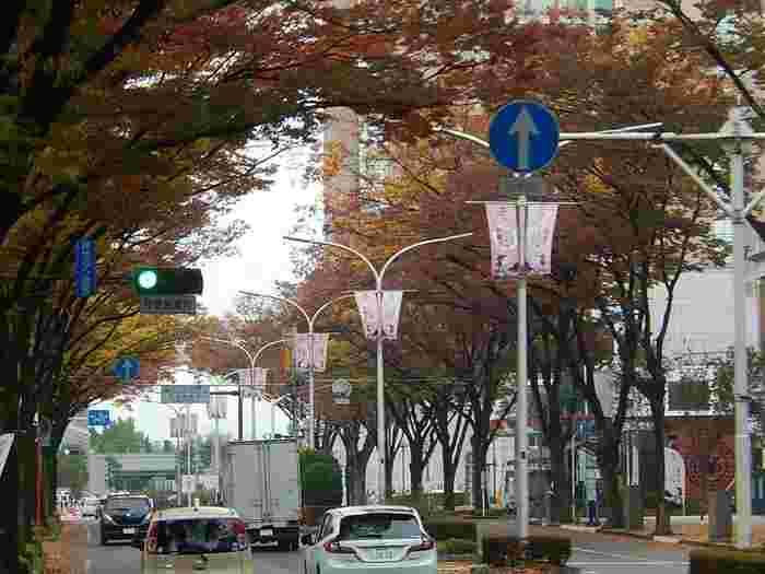 新幹線高崎駅があり、群馬県の入り口でもある高崎市。榛名山や榛名湖などの自然を感じられるスポットや、県庁所在地である隣の前橋市ケヤキ並木などを訪れる人が多くいます。