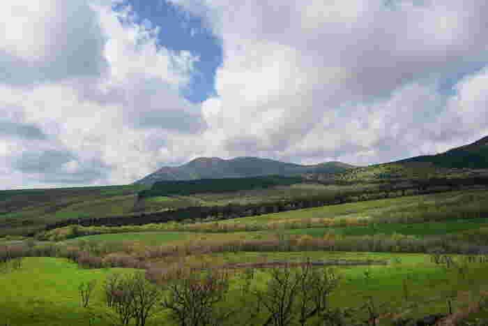 瀬の本高原は、南小国町の最東端から、大分県にまたがる高原地帯です。