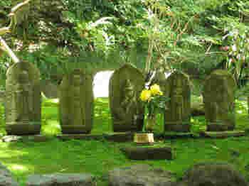 報国寺は「ミシュラン・グリーンガイド」で、星3つを取得した美しいお寺。のんびりゆっくり訪れて頂くことをお勧めいたします。