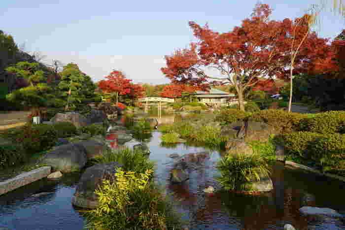 広い敷地内には、美しい日本庭園もあります。深紅に染まった樹々、ゆったりと流れる川、ゆるやかな太鼓橋、所々に見える常緑樹が見事に織りなし、錦絵のような景色をつくり出しています。