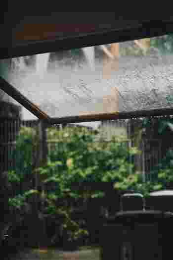 もしもの時の備えにも。「雨水タンク」で自然の恵みを活かす暮らし