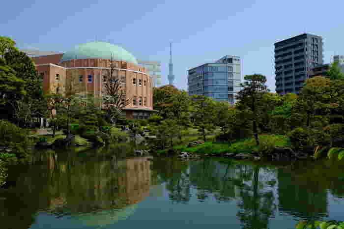 JR両国駅西口より徒歩5分のところにある「旧安田庭園」。約1万4千坪の敷地には、美しい日本庭園が広がり、両国の癒しのスポットとして親しまれています。季節のうつろいと共に、四季折々の表情をたのしむことができ、ビルの合間からはスカイツリーを鑑賞することも出来ます。両国を散策しながら、都会と自然の融合を堪能してみてはいかがでしょう。