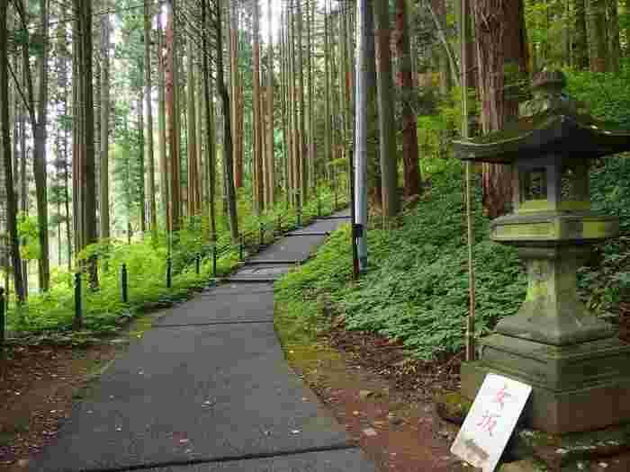 石段の他になだらかな坂道もあります。こちらも11月下旬から4月中旬までの期間は中社で御朱印をいただくことになります。