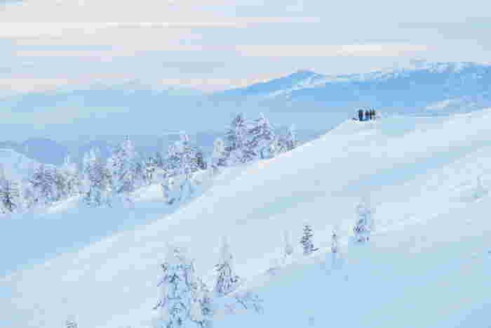 他にも、「秋保温泉」を始めとする数々の温泉地や、アウトドアやスキーを楽しめる「蔵王」など、海にも山にも魅力がいっぱいです。福島、山形などの隣県へのアクセスも良いことから東北観光の拠点として栄えています。 秋のお出かけに、紅葉も美しい宮城県はいかがでしょう?