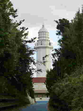 房総の美しい夕日を眺めるなら「野島埼灯台(のじまさきとうだい)」まで足を延ばしてみませんか?白い八角形の形をした灯台は、明治2年にフランス人技師・ウェルニー氏が設計した日本最初の洋式灯台のひとつです。