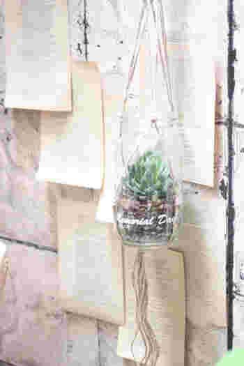 お洒落なペーパーで飾った壁にもガラスのポットを使って吊るせば、軽やかな雰囲気に。