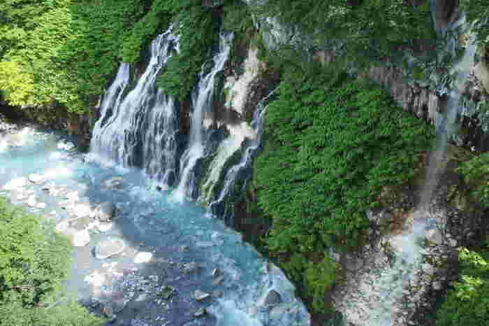 白金温泉郷をとうとうと流れる美瑛川に架かるブルーリバー橋からは、白ひげの滝の全景を眺めることができます。渓谷の隙間から湧水のように幾筋にも流れ落ちる滝水は、白く輝く絹糸のような美しさです。