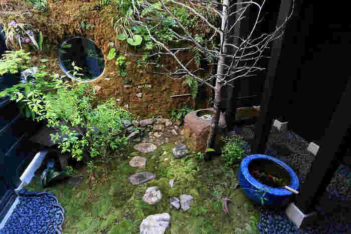 心癒されるお庭もあります。日々の喧騒を忘れて、ホッと一息つける贅沢な空間ですね。