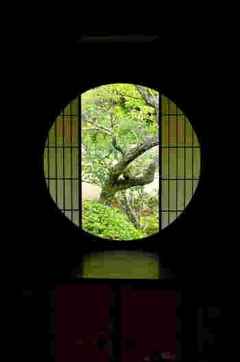 丸い窓から障子越しに梅の木が見える「悟りの窓」。 禅の教えでは真円が悟りの境地を表すため、悟りの窓と呼ばれています。