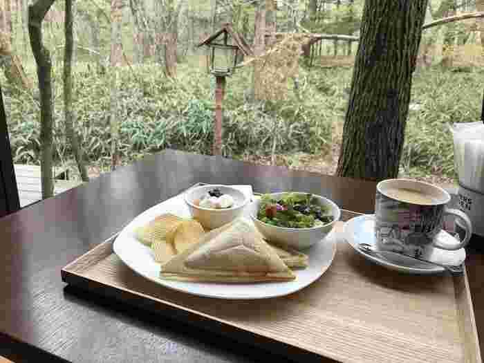 テラス席には野鳥やリスが遊びにくることも。コーヒーは自家焙煎で、オーナーのこだわりの味が楽しめます。