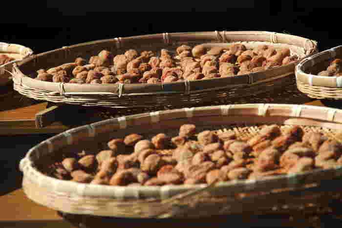 """大暑の頃は「土用干し」と言って、今年漬けた梅を干し上げる時期でもあります。梅干しは""""う""""が付く食べ物で疲労回復効果が期待できますので、ぜひ暑い時期の食卓に取り入れてみて下さい。"""