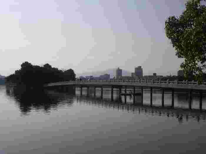 大濠公園の特徴のひとつが、池に浮かぶ3つの島と浮見堂、そして周遊道と島をつなぐ「観月橋」も風情のある佇まいです。鳥たちが水辺で気持ちよさそうに泳ぐ姿を眺めたり、自然と触れ合ったり…。都心にあるとは思えない、風光明媚な公園です。