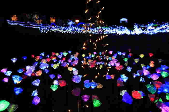 かのやばら園ではクリスマスの時期に、バラ園全体を使ったイルミネーションイベントを開催しています。広大な敷地に広がる煌びやかな光は圧巻で、バラをイメージしたライトも飾られます。花火などもあり、たくさんの人が訪れるイベントです。