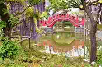 """葛飾北斎の版画「かめゐど天神たいこはし」のモチーフになった太鼓橋。""""男橋""""と""""女橋""""の2つがあります。"""