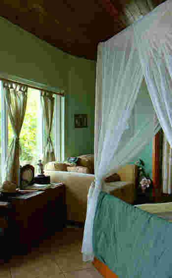 ナチュラル派におすすめのグリーン。木の天井と家具で南国のようなリラックス感のあるお部屋になっています。