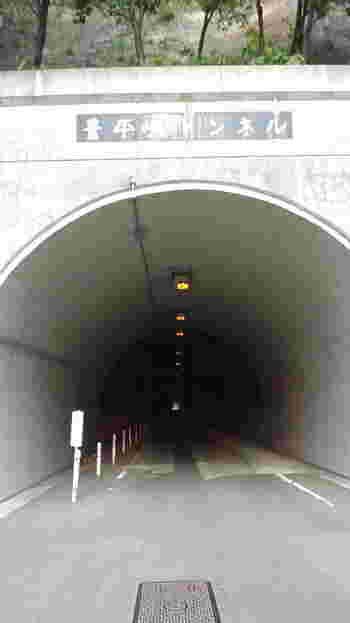 ダムの横には涼し気なトンネルが。 歩いて通ることも可能です。