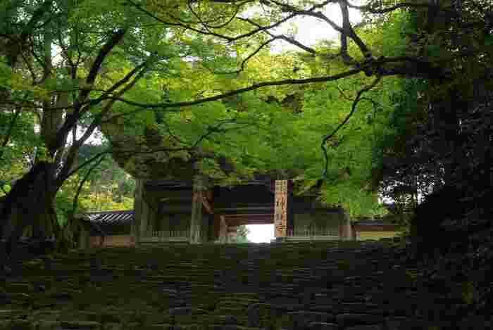 【神護寺・仁王門は、元和9(1623)年の建立。】