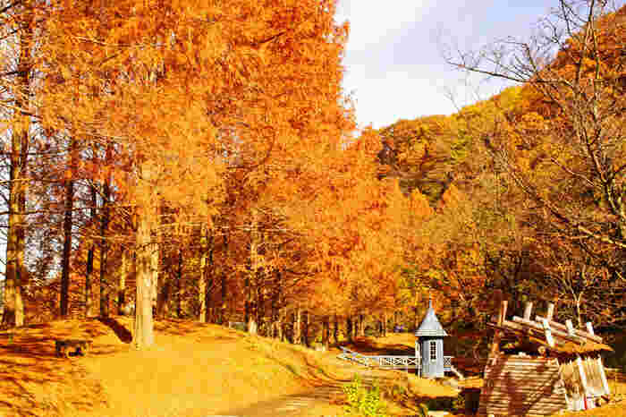 そっと森の中に佇む帽子のような屋根の建物。スナフキンが釣りをする「水遊び小屋」です。景色を眺めていると、スナフキンが橋の上からひゅっと現れて、のんびり釣りをはじめそうな雰囲気ですね。