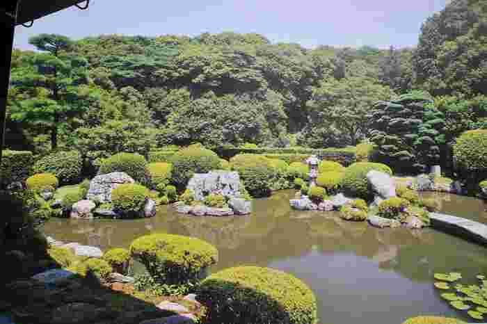 【応仁の乱後、消失した清水寺を再興した願阿上人の住居が起源と伝わる「成就院」。見事な庭園と襖絵は、毎年期間限定で特別公開されています。】