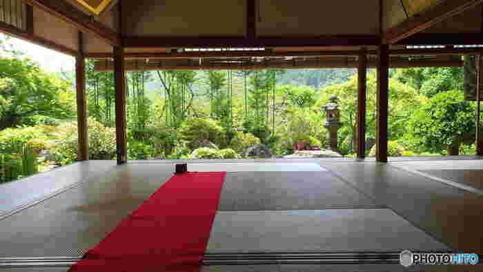 宝泉院と合わせて訪れたいのが実光院。大原のバス停から宝泉院へ行くまでにあるお寺で、こちらも隠れた名所です。