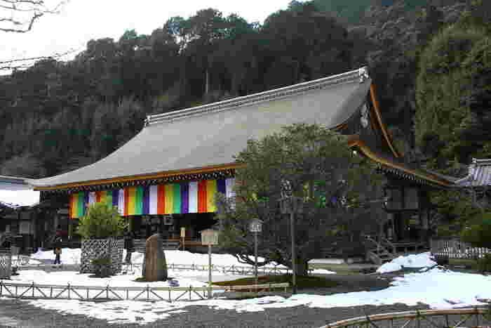小倉百人一首で知られる小倉山山麓に佇む二尊院は、平安時代初期に嵯峨天皇の勅命により建立された天台宗の寺院です。ここには、二条家や三条家をはじめとする数々の公家の墓所があります。