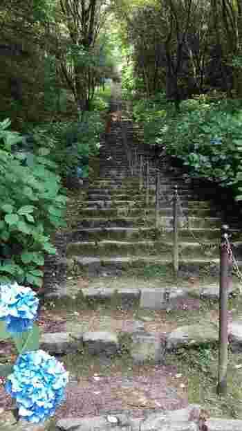 公園の奥には、飛鳥盆地を一望できる展望台へと続く456段の石段があります。