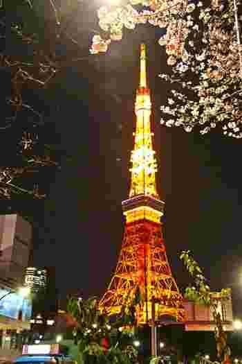 東京タワーも眺められる公園。
