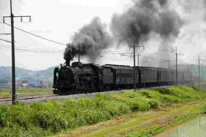 運がよければ蒸気機関車が走るメルヘンチックな風景に出会えることも♡