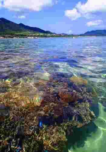 米原ビーチは、すぐ近くにサンゴ礁が広がっています。ここでは、色とりどりの珊瑚や美しい熱帯魚を見ることができます。