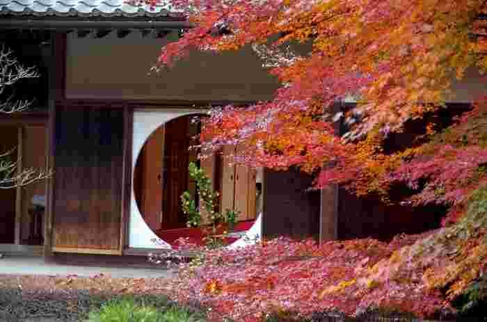 """北鎌倉駅から徒歩10分のところ、""""あじさい寺""""という呼び名で有名な「明月院」ですが、実は紅葉も美しいんですよ。見どころはなんといっても本堂にあるこの円窓「悟りの窓」。"""