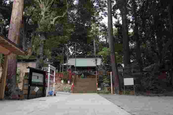 千葉県の印旛郡市にある「麻賀多十八社」の総本社が、成田市にある「麻賀多神社(まかたじんじゃ)」。1,700年以上の歴史がある由緒ある神社で、地元の鎮守さまとして親しまれています。