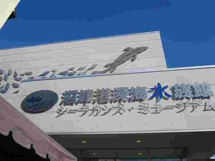 沼津港深海水族館は静岡県沼津市にあり、主に深海魚を展示している水族館です。深海魚は中々見る機会がないので、遠方からの観光客も多く訪れる人気の水族館でもあります。