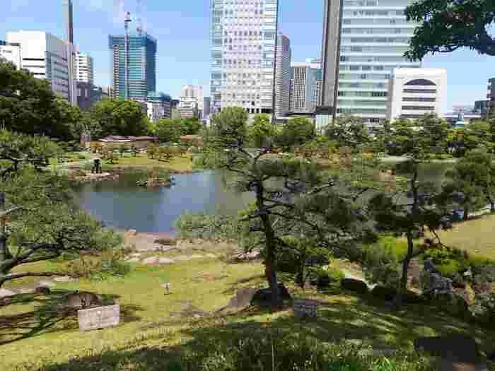 山手線の浜松町からすぐのところにある「旧芝離宮恩賜庭園」。初めて訪れた方は、都心の真ん中にこんなに緑豊かな場所があったのかと驚くのではないでしょうか?江戸初期に造られた大名庭園のひとつをゆっくり散策してみましょう。