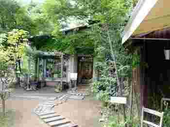 緑あふれる入口を少し歩くと現れる、敷地内の中心的存在の建物。