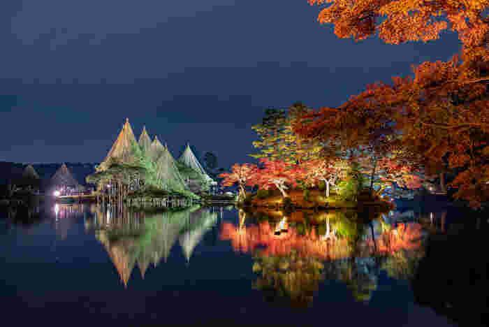 紅葉のシーズンになると兼六園では夜間のライトアップが行われます。夜闇を背景に色鮮やかに染まった樹々、雪吊りが施された唐崎松が浮かび上がり、日中とは異なる幻想的な風景を楽しむことができます。