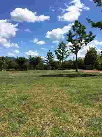 みなとの森という名前がピッタリの園内には、手入れされた芝生の香りが漂います。