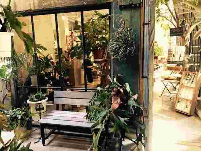 かっぱ橋散策のあとは、緑がいっぱいのオシャレなカフェ「ROUTE BOOKS(ルートブックス)」でひとやすみはいかが?