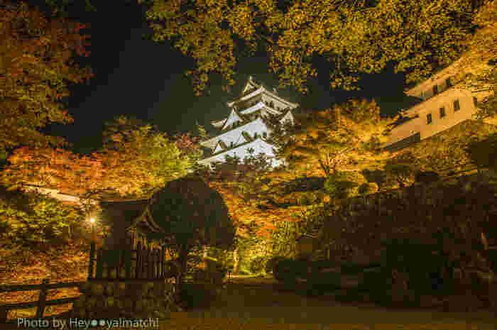 """11月初旬から中旬にかけては、お城の周りが紅葉で真っ赤に色づき、その姿をひと目見ようと大勢の観光客が訪れます。夜間ライトアップなども行われているので、夜の散策もおすすめです!""""有形文化財""""に指定されている天守閣。旅好きが選ぶ""""日本の城ランキング2017""""では、郡上八幡城がベスト13に選ばれるほどの人気のスポットです。"""