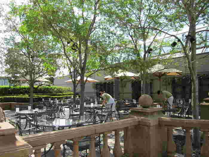 併設されたガーデンカフェでは、飲み物や軽食が楽しめます。