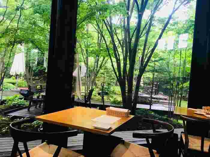 店内の大きな窓からは、森の緑が楽しめます。テラス席もあるので、高原の風を感じながらお食事するのもおすすめ。