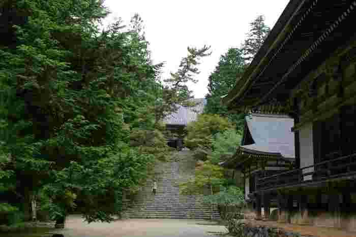 【五大堂と毘沙門堂の石段の上に建つ「金堂」。一段一段と上る度に景色が変わるのも、神護寺ならではの魅力。】