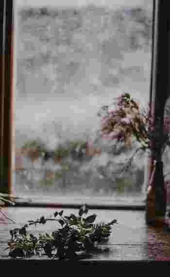 リースベース要らず!太めの針金に植物をぐるりと巻きつけたら、即席リースに大変身。そのまま乾燥させてドライにして楽しむのも素敵。窓辺にそっと置いておくだけでも雰囲気が出ますね。