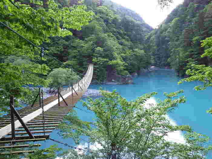 吸い込まれるようにかなたに伸びる夢の吊り橋。朝早い時間に訪れると、人も少なく、いっそう神秘的です。ちなみに吊り橋は、一度に10人までしか渡ことができないので、混雑するシーズンには行列もできるそうです。