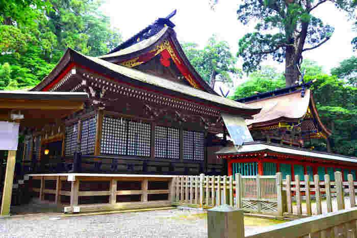元和5年(1619年)に徳川2代将軍の秀忠公が寄進したという本殿・石の間・幣殿・拝殿の4棟からなる社殿は、重要文化財に指定されています。本殿は参道から見て一番奥にある三間社流造の建物で、御祭神が祀られています。