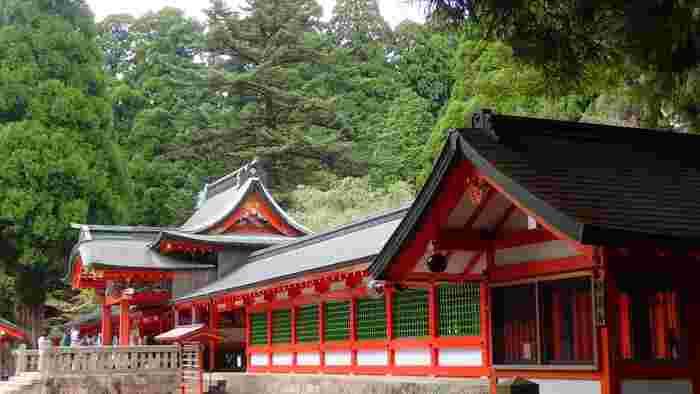 霧島神宮は6世紀に創建された歴史ある神宮で、元々は背門丘に建てられていました。しかし、霧島山の噴火によって消失を繰り返し、1715年に島津吉貴の寄進によって現在の場所に再建されました。