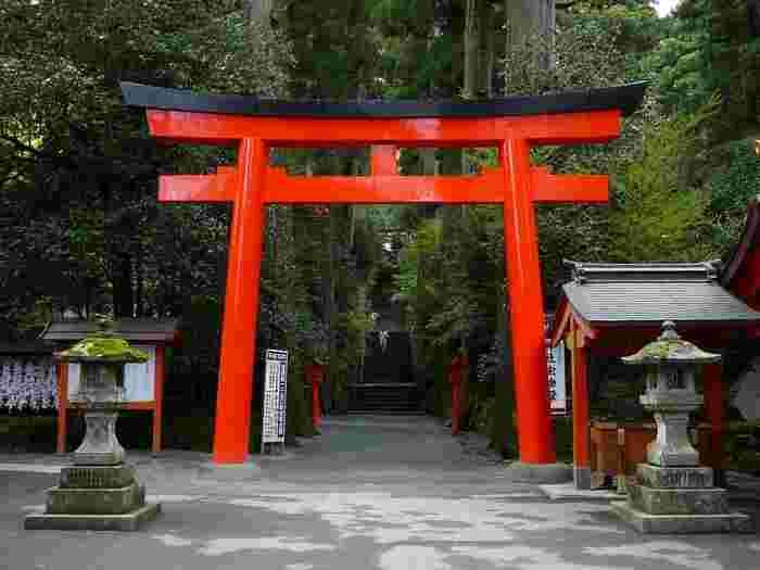 このエリアでは、「箱根海賊船」や関東屈指のパワースポット「箱根神社」が人気ですが、芦ノ湖周辺の観光スポットは実に多彩です。【「箱根神社」】